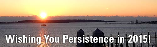 Wishing You Persistence in 2015!