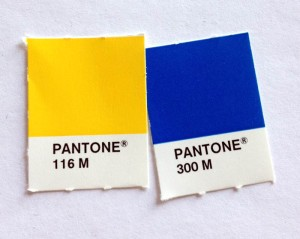 Do You Need a Pantone Color For Your Logo Or Brand Identity?