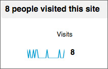 Only 8 visitors to your web site