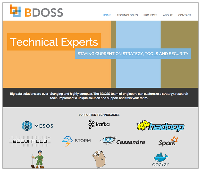 BDOSS-website-design-home