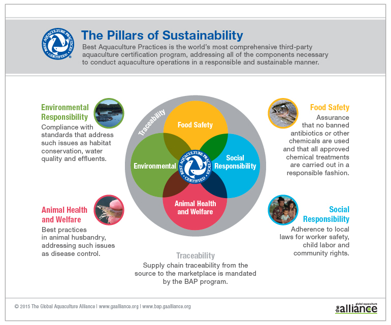 BAP-Pillars-of-Sustainability