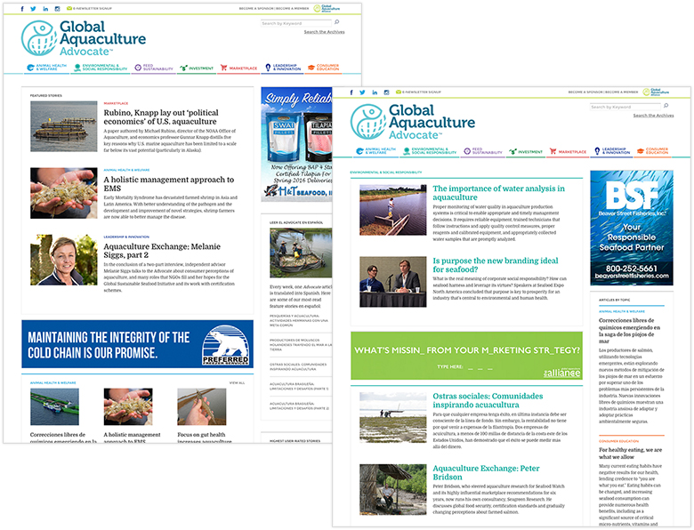 GAA Advocate e-news website design